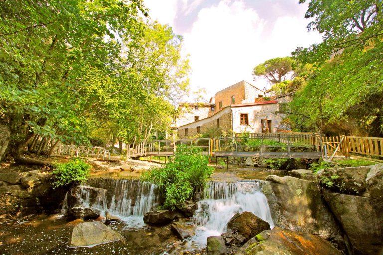 Moulin à papier de brousse © clida