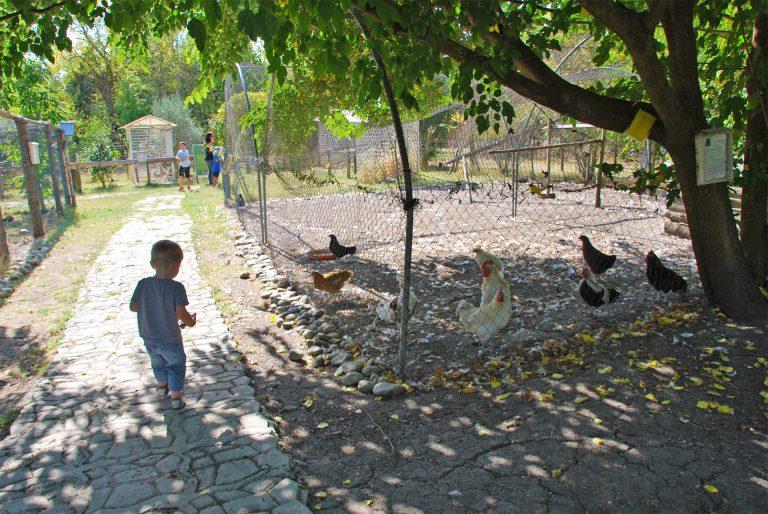 Visite de la ferme la matarelle avec les enfants ©Office de Tourisme de Castelnaudary
