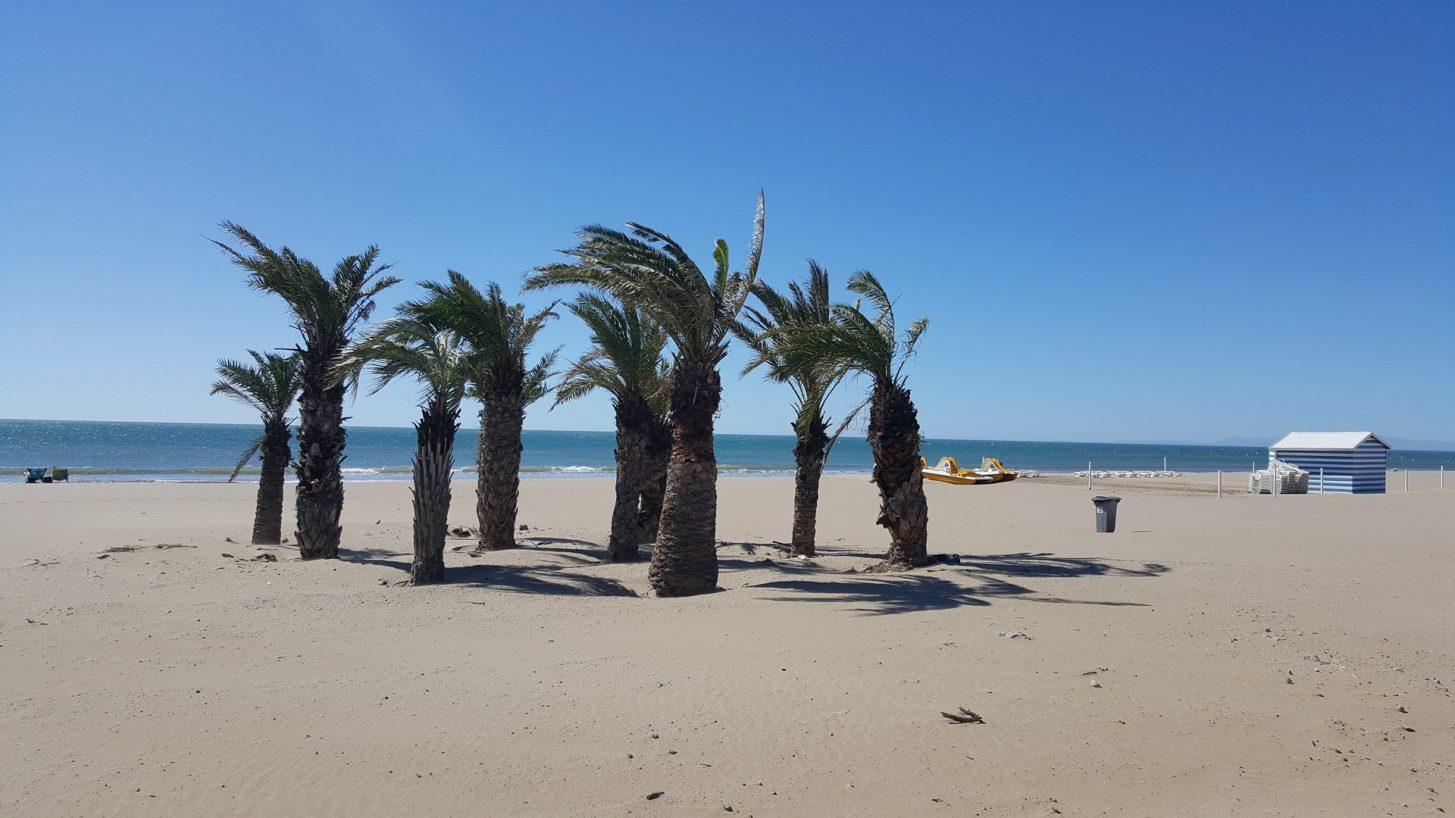 Vue sur la plage de Narbonne-plage ©ADT de l'Aude