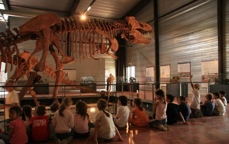 Musée des dinosaures, Espéraza