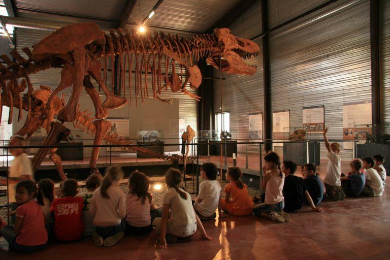 Visite avec les enfants au Musée des dinosaures à Espéraza ©CCI de Carcassonne