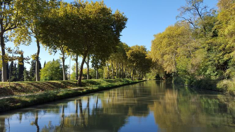Carcassonne, canal du midi, platanes