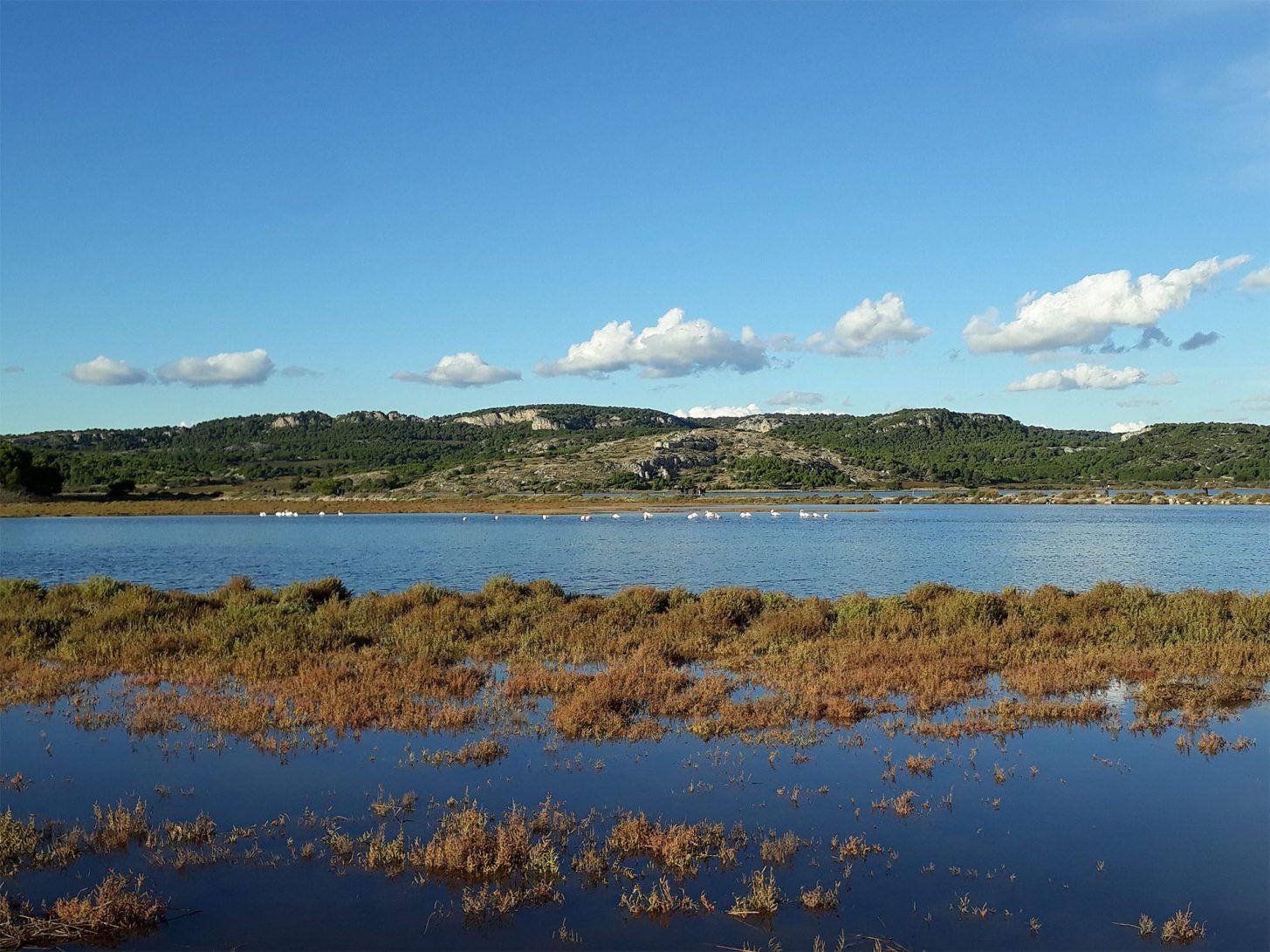 Balade autour de Gruissan et son étang ©ADT de l'Aude