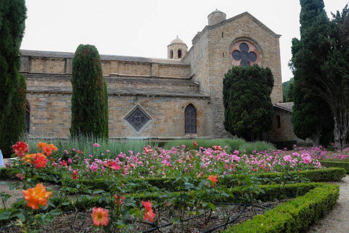 Narbonne, abbaye de fontfroide, roseraie