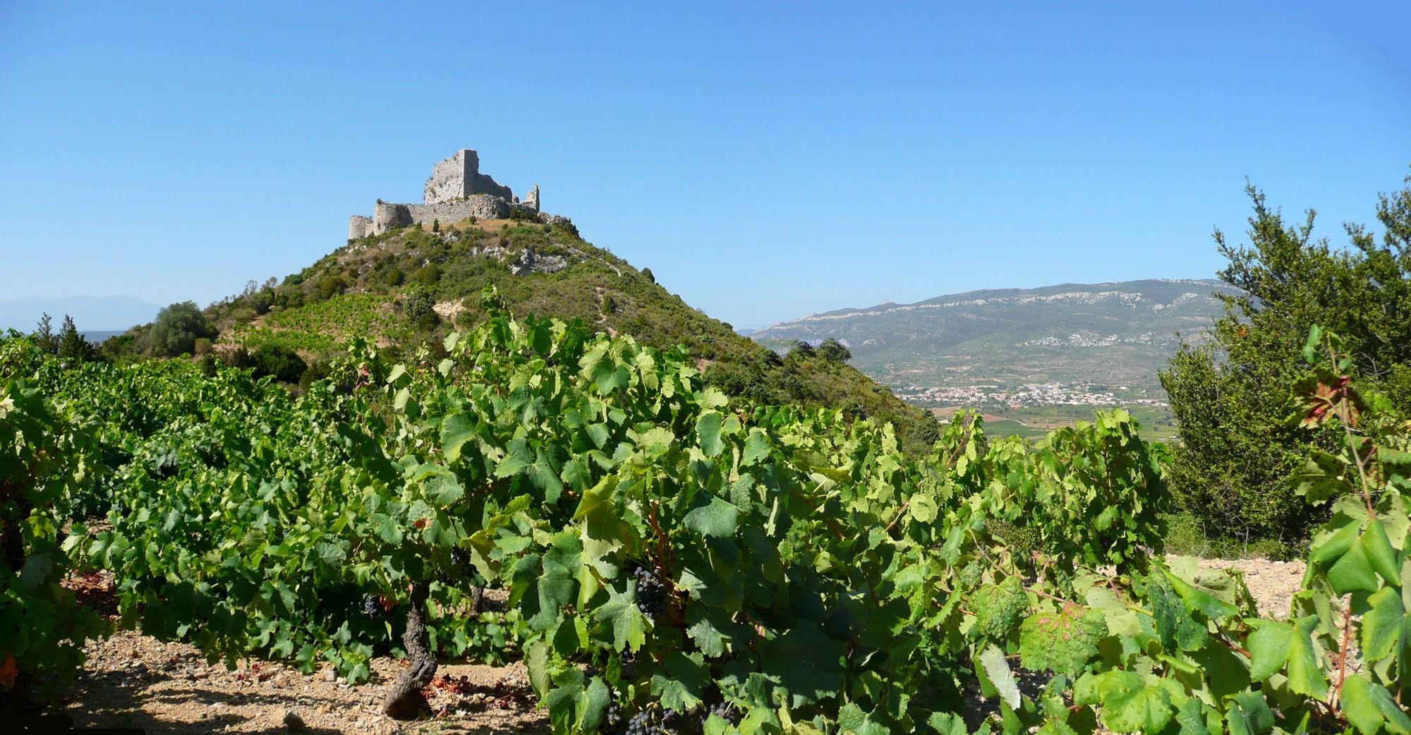 Balade dans les vignes en direction du château d'Aguilar à Tuchan