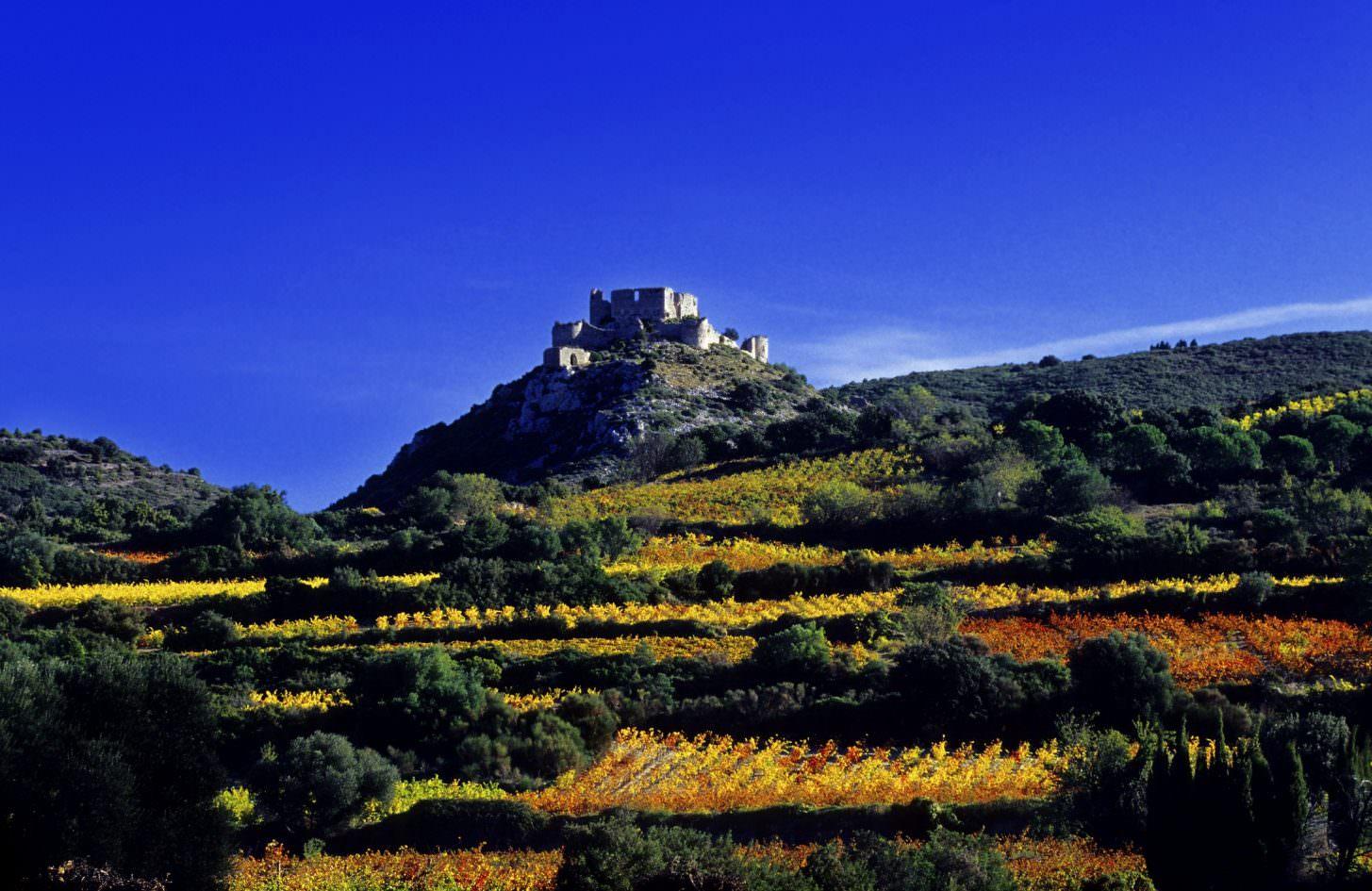 Balade dans les vignes en direction du Château d'Aguilar ©Céline Deschamps-ADT de l'Aude