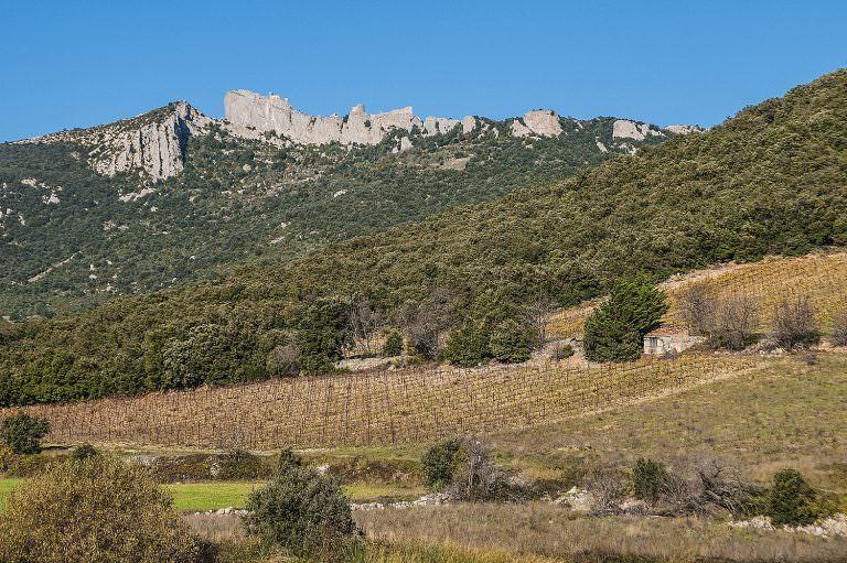 Château de Peyrepertuse à Duilhac sous Peyrepertuse ©Edgard Depuy-ADT de l'Aude