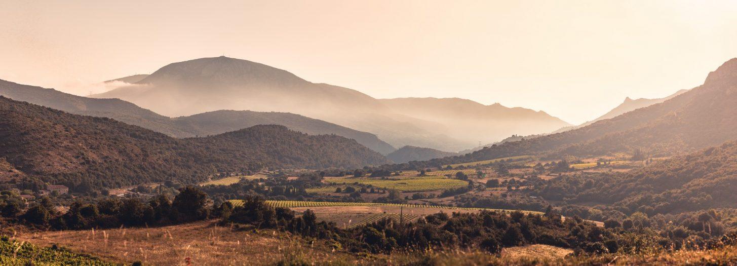 Vue sur les vignes dans les Corbières ©Vincent Photographie-ADT de l'Aude