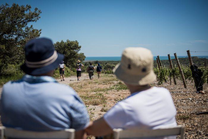 Randonnée à travers les vignes dans la Clape ©Agnès Lescombes