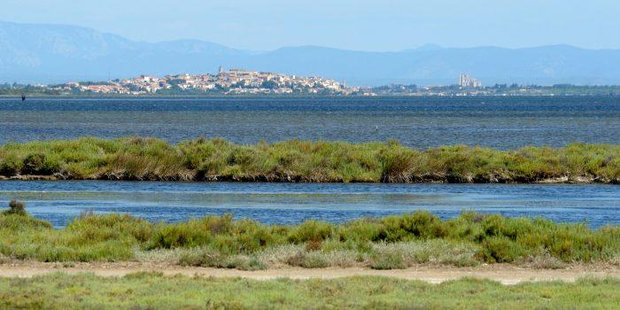 vue de Narbonne et Bages depuis l'étang de Sigean, crédit J. Belondrade