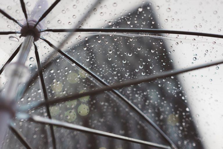 Top 5 - Que faire à Narbonne quand il pleut ? ©StockSnap