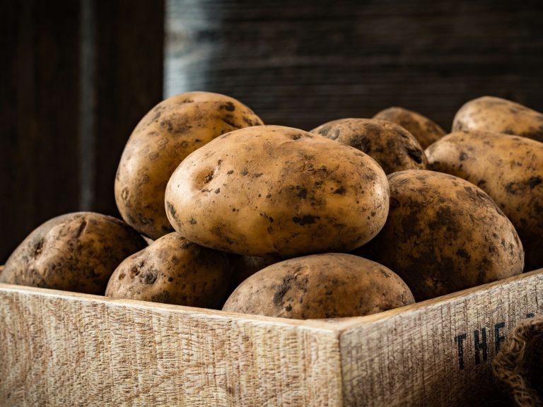 Pommes de terre de la marque Pays CathareAil et persil© Conseil Départemental de l'Aude
