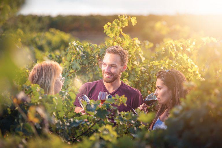 Dégustation de vin dans les vignes ©Vincent Photographie-ADT de l'Aude