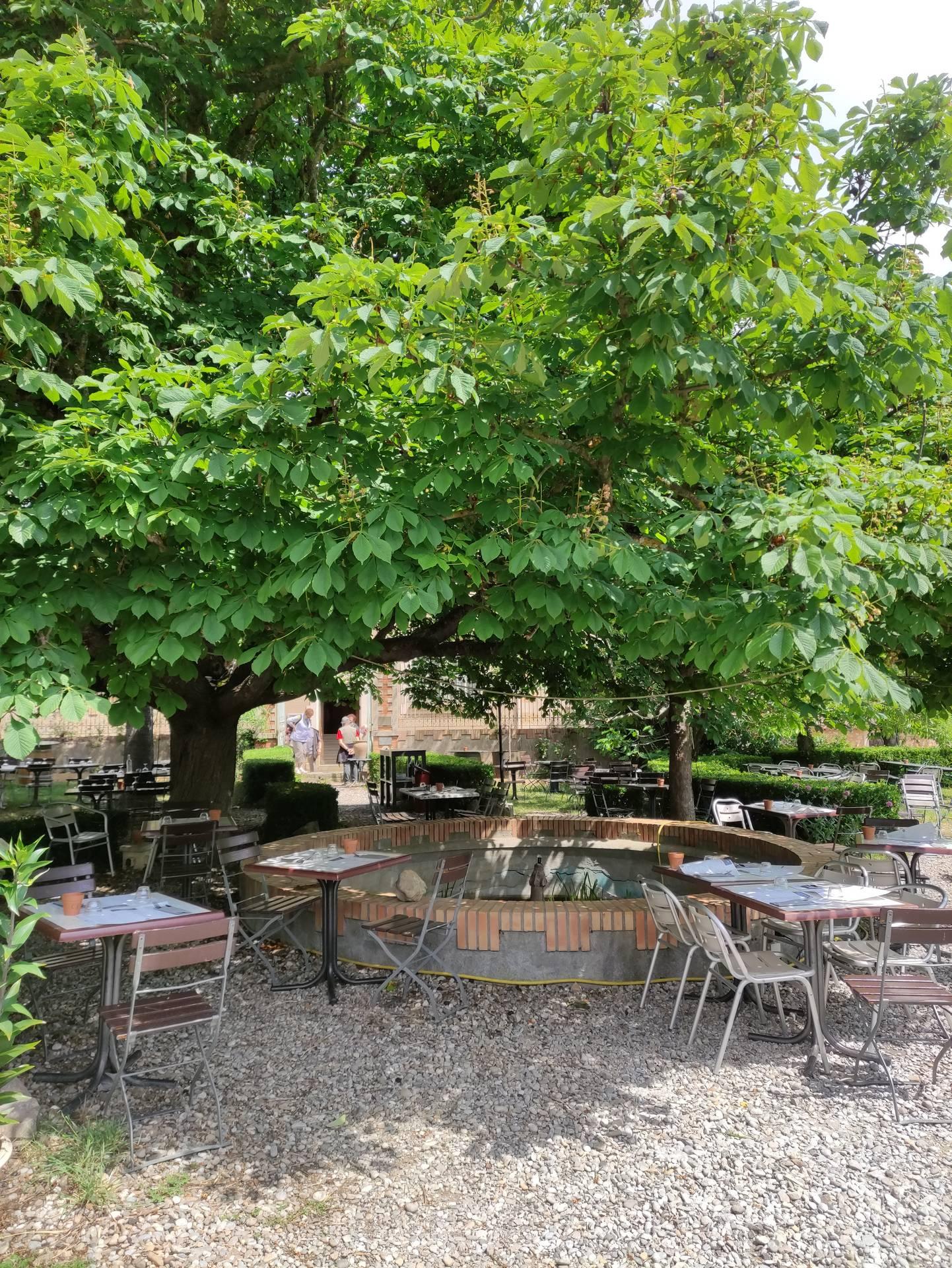 Terrasse ombragée du restaurant le Jardin de Marie à Rennes le Château ©OT du Limouxin