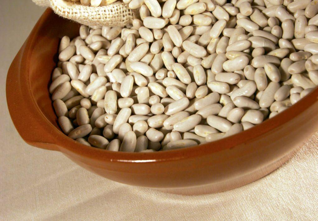 Le haricot lingot de Castelnaudary, l'ingrédient phare du Cassoulet ©Clida-Conseil Départemental de l'Aude
