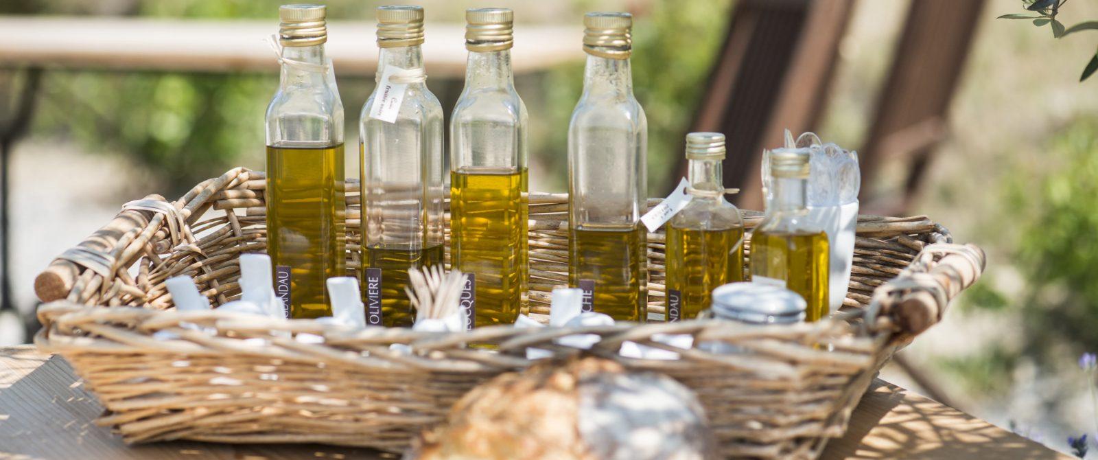 huile d'olive dans l'Aude