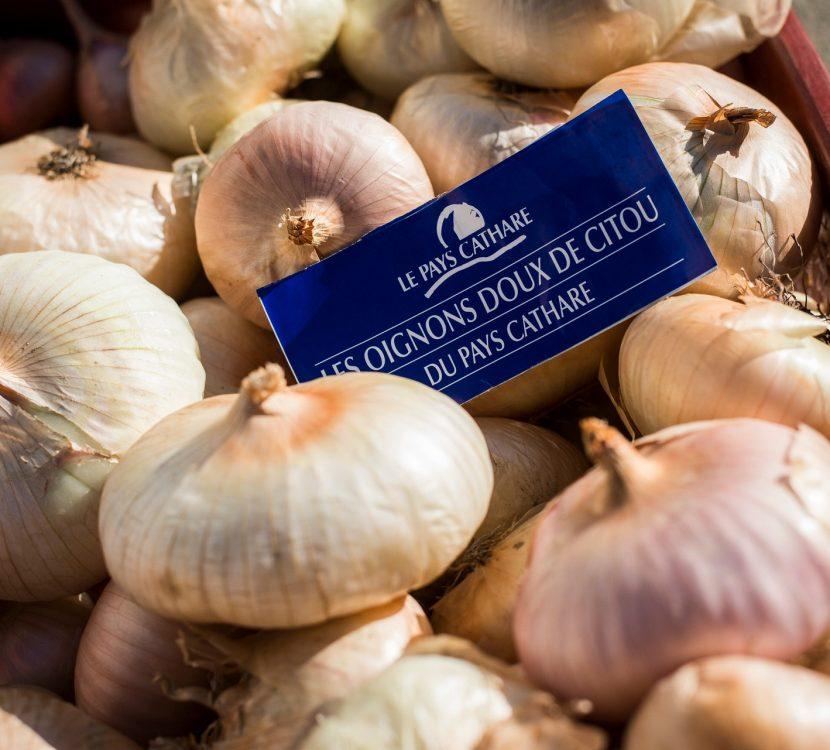 Oignon doux de Citou, marque Pays Cathare©L. Charles, ADT de l'AUDE