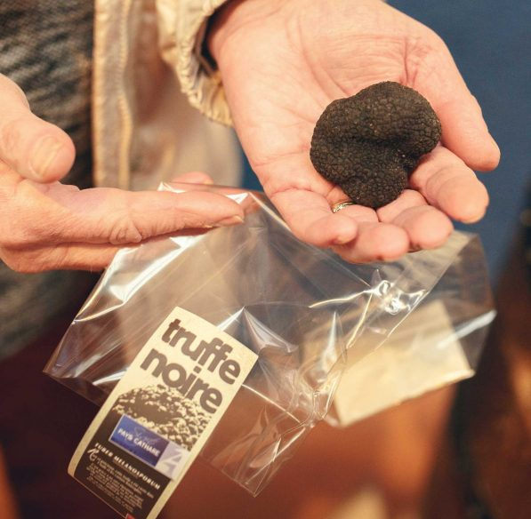 Présentation de la truffe ©Vincent Photographie-ADT de l'Aude