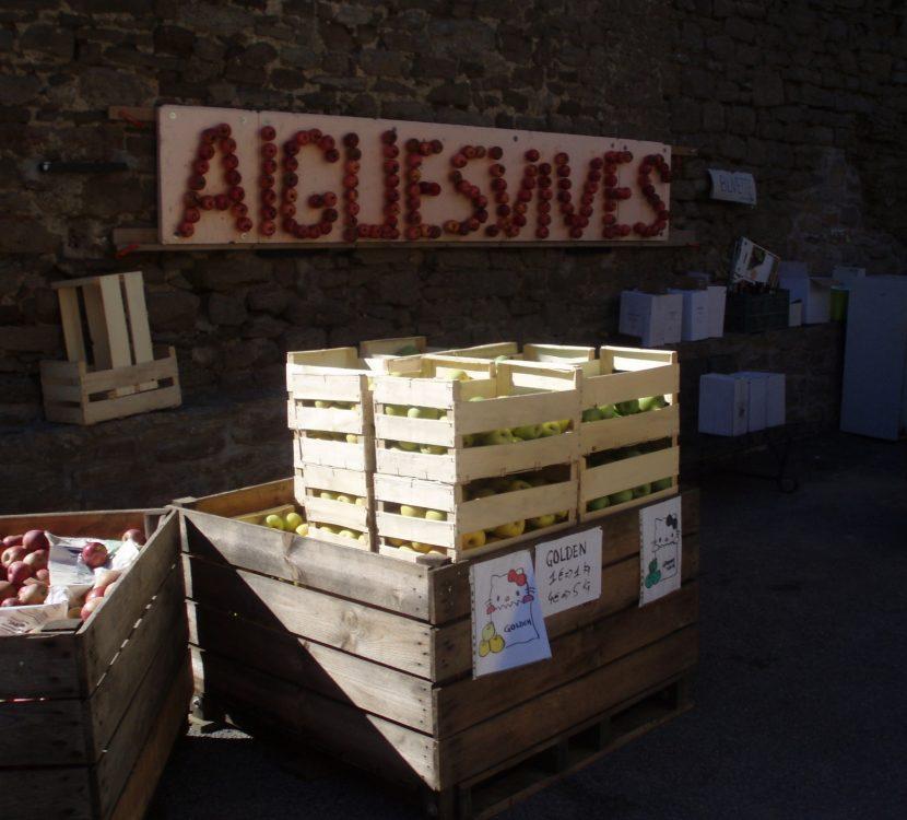 Fête de la pomme et du riz à Aigues Vives, crédit Grand Carcassonne Tourisme