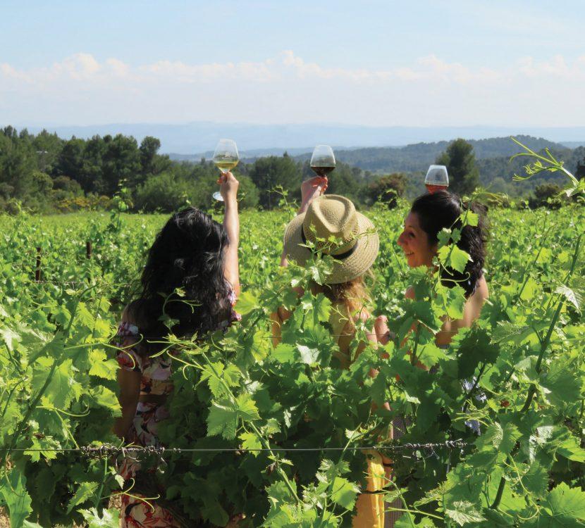 Balade vigneronne sur le territoire de Grand Carcassonne, crédit Grand Carcassonne Tourisme