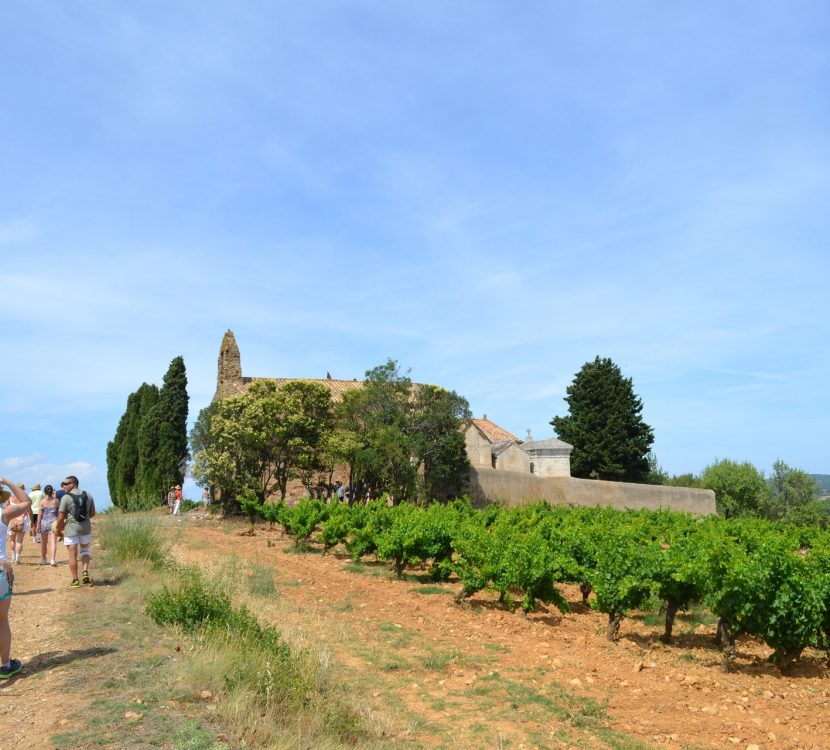 Les Camins de Boutenac, crédit Via Domitia
