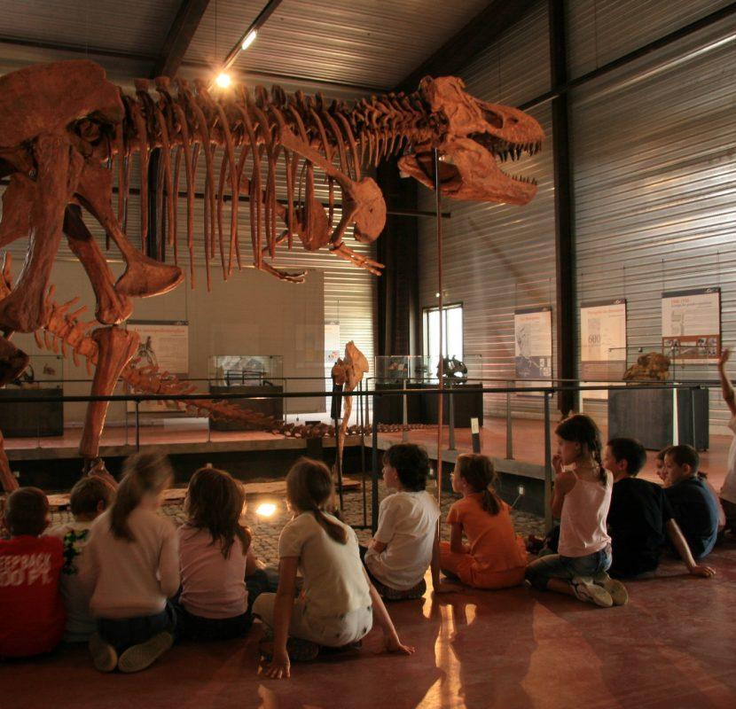 Visite du musée des dinosaures à Esperaza ©CCI Carcassonne