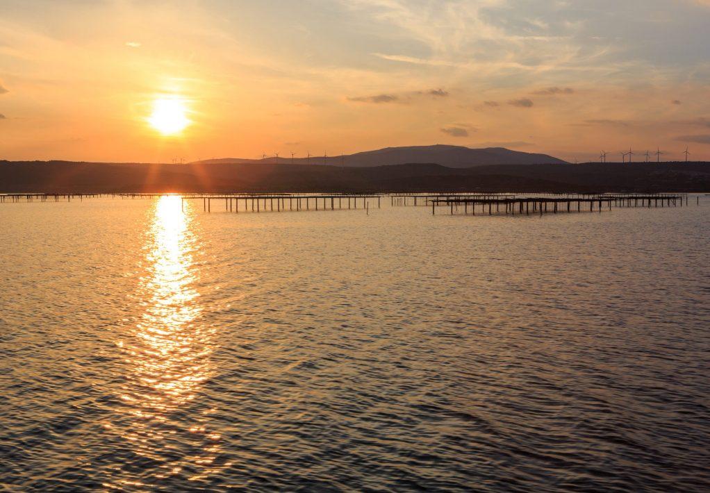 mediterranee-2014-09-parc-huitre-etang-coucher-soleil-cr-c-baudot-ot-gd-narbonne