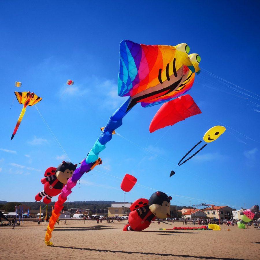 Les Natur'Ailes, à Narbonne plage,manifestation de cerfs-volants© Ailium, ADT Aude