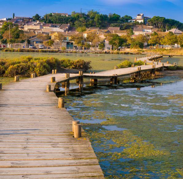 peyriac-de-mer-2017-09-etang-bages-ponton-cr-c-deschamps-adt-aude (Copier)
