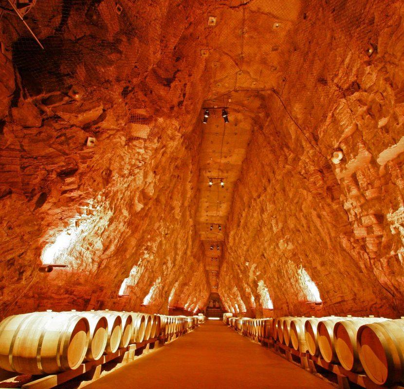 Visite de la galerie de Terra Vine à Portel-des-Corbières ©Céline Deschamps-ADT de l'Aude
