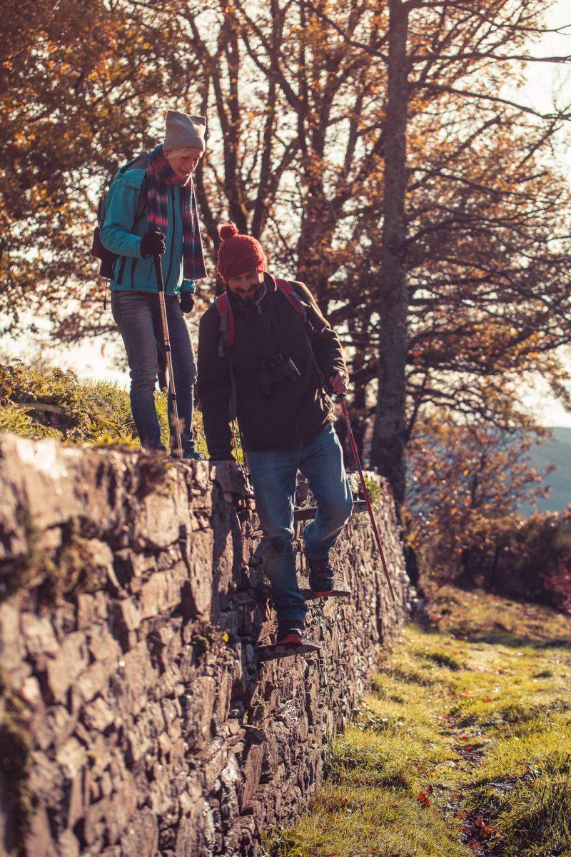 Randonnée en Montagne Noire à travers les murets de pierre ©Vincent Photographie, ADT de l'Aude