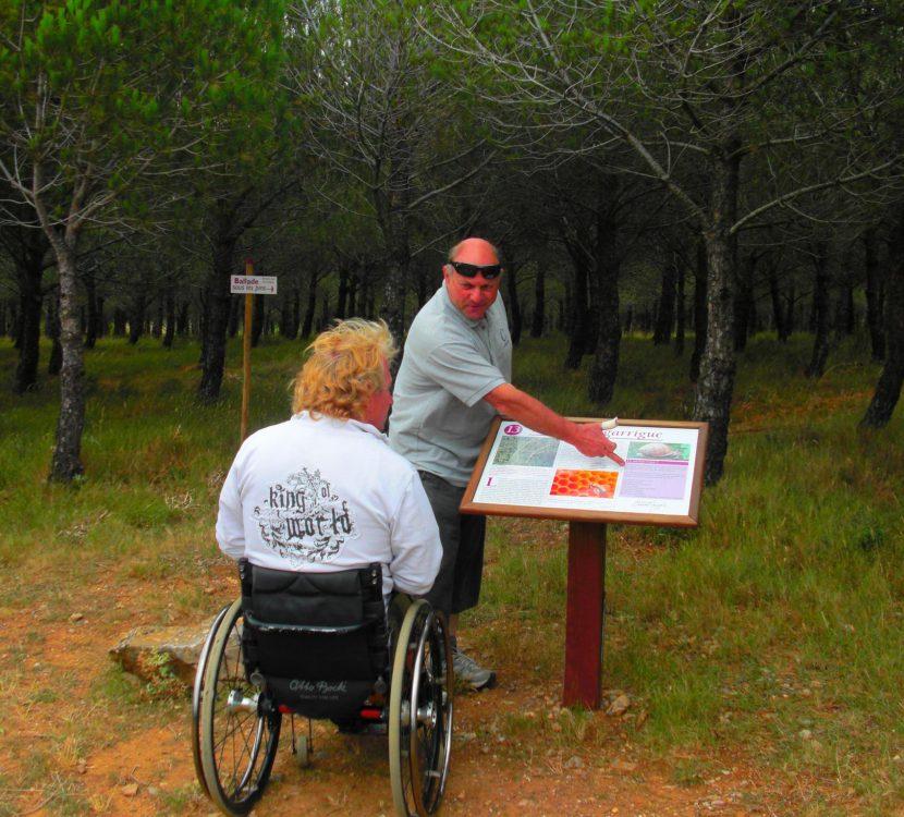 talairan le sentier des orchidées domaine serres mazard fauteuil